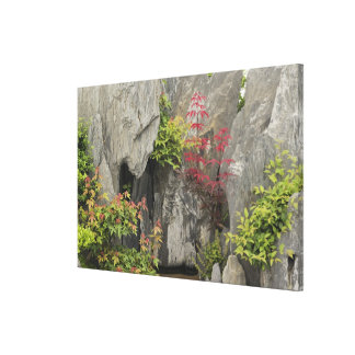 Bao's family garden, Huangshan, China. Gallery Wrapped Canvas