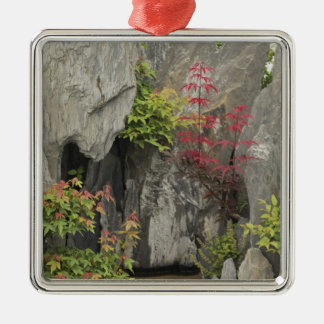 Bao's family garden, Huangshan, China. Silver-Colored Square Decoration