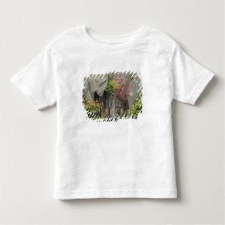 Bao's family garden, Huangshan, China. Toddler T-Shirt