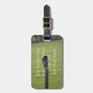 BAOW Barred Owl Bag Tags