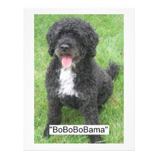 Barack Obama Portuguese Water Dog 21.5 Cm X 28 Cm Flyer