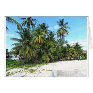 Barbados 2010 279 card