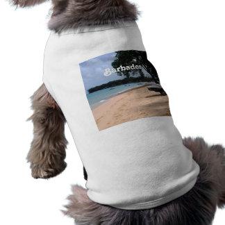 Barbados Beach Shirt