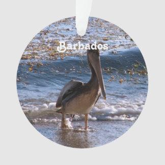 Barbados Brown Pelican Ornament