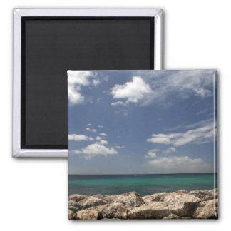 Barbados Magnet