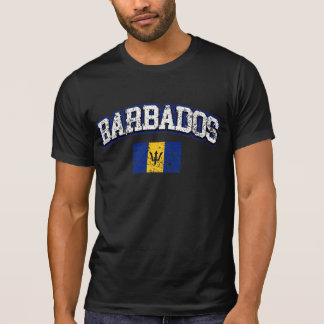 Barbados Vintage Flag T-Shirt