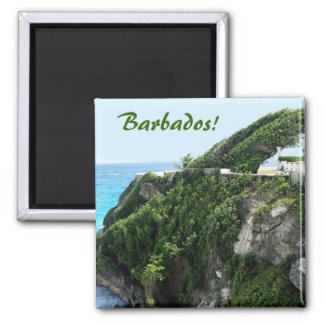 Barbados windy paradise magnet