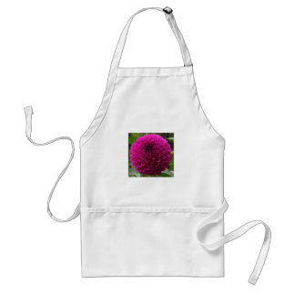 barbarry bingo pink standard apron