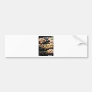 Barbecued steak and chicken on the grill bumper sticker
