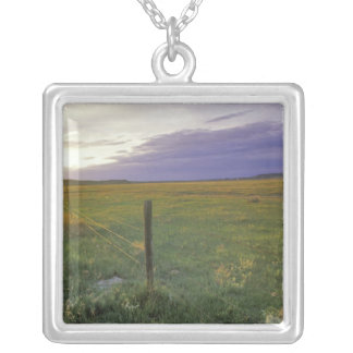Barbed Wire Fenceline in northeastern Montana Silver Plated Necklace