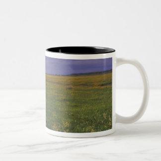 Barbed Wire Fenceline in northeastern Montana Two-Tone Coffee Mug