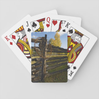 Barbed Wire Poker Deck