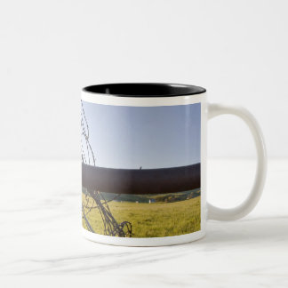 Barbed wire rolled up on fencerow near Two-Tone mug