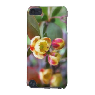 Barberry Flowers iPod Touch 5G Case