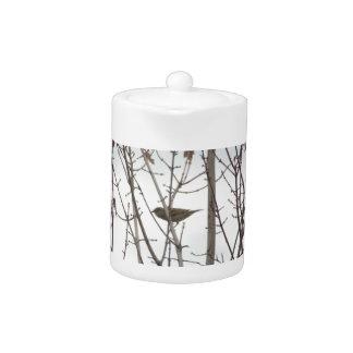 Bare Limb Bird teapot, by H.A.S. Arts
