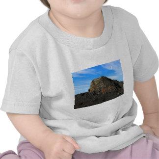 Bare Precipice T Shirt