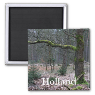 Bare tree in a forest refrigerator magnet