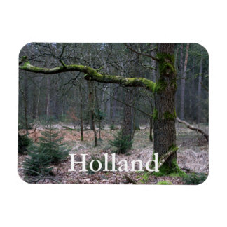 Bare tree in a forest rectangle magnets