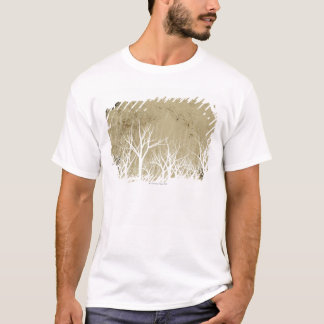Bare Winter Trees T-Shirt