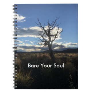 Bare Your Soul Journal