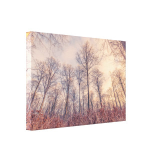 Barenaked trees in the forest canvas print