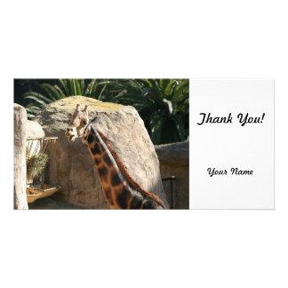 Baringo Giraffe Customised Photo Card