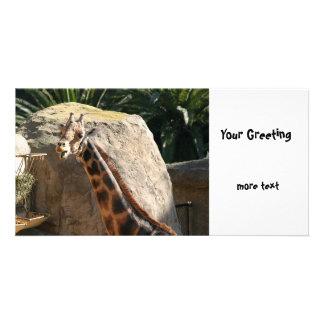 Baringo Giraffe Personalised Photo Card
