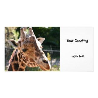 Baringo Giraffe Customized Photo Card