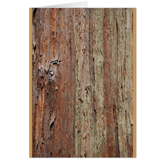 Bark Card