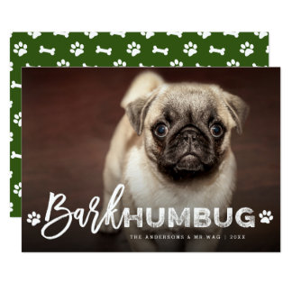 Bark Humbug Brush Dog Lover Holiday Photo Card