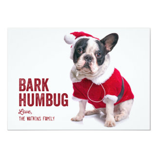 Bark Humbug Dog Lover Holiday Card 13 Cm X 18 Cm Invitation Card