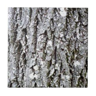 Bark Of A Hickory Tree Tile