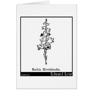Barkia Howlaloudia. Card