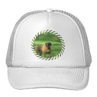 Barking Boxer Dog Baseball Hat