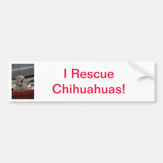 Barking Chihuahua Bumper Sticker