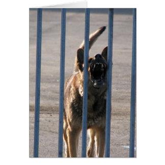 Barking dog note card