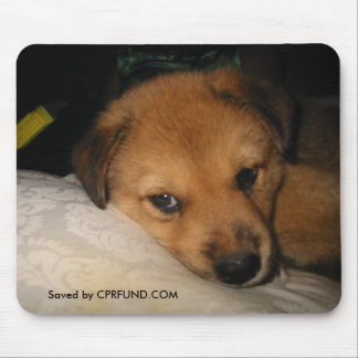Barkley-rescue dog mouse pad