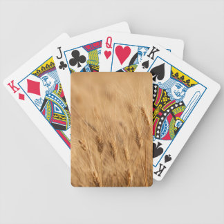 Barley field bicycle playing cards