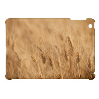 Barley field case for the iPad mini