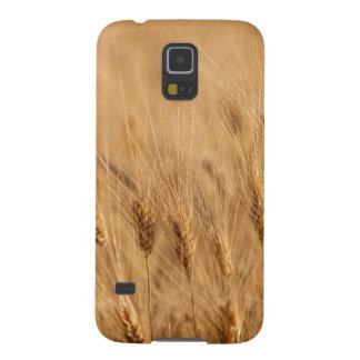 Barley field galaxy s5 cases