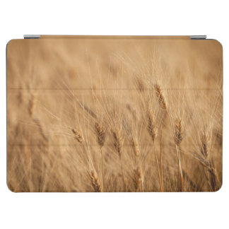 Barley field iPad air cover