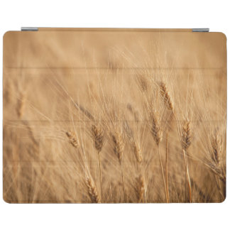 Barley field iPad cover