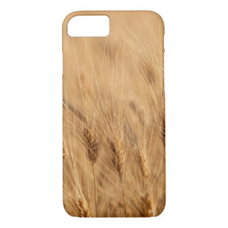 Barley field iPhone 7 case