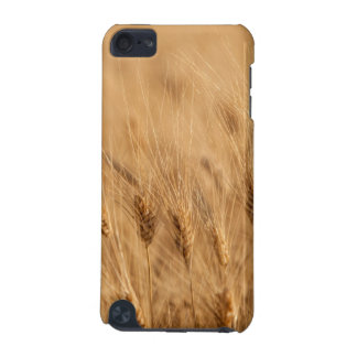 Barley field iPod touch (5th generation) case