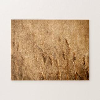 Barley field jigsaw puzzle