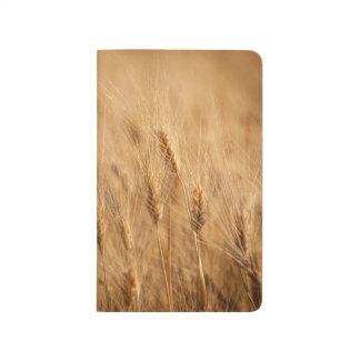 Barley field journal