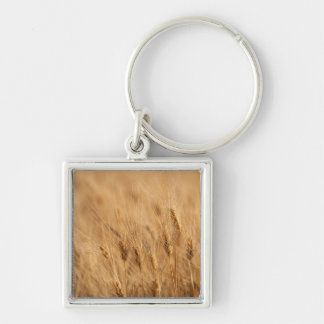 Barley field key ring