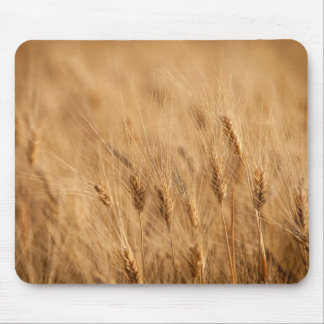 Barley field mouse mat