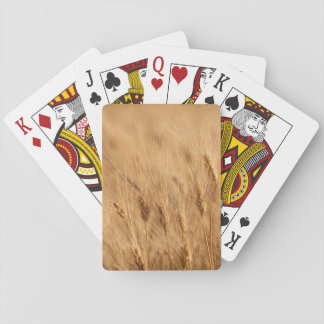 Barley field playing cards