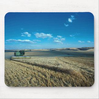Barley harvest mouse mat